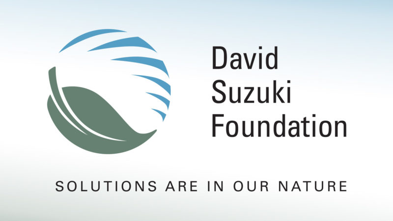 WBM Works With the David Suzuki Foundation